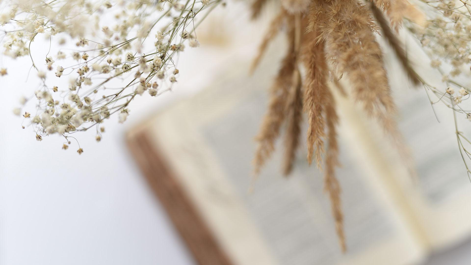 Bibel og korn