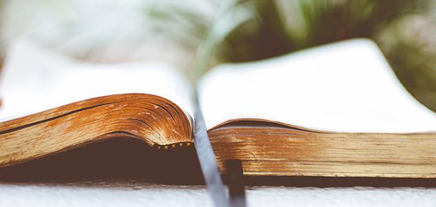 Bibelen - billede af Ben White